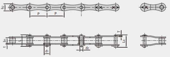 双节距传动链